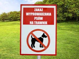 Tablica informacyjna do parku